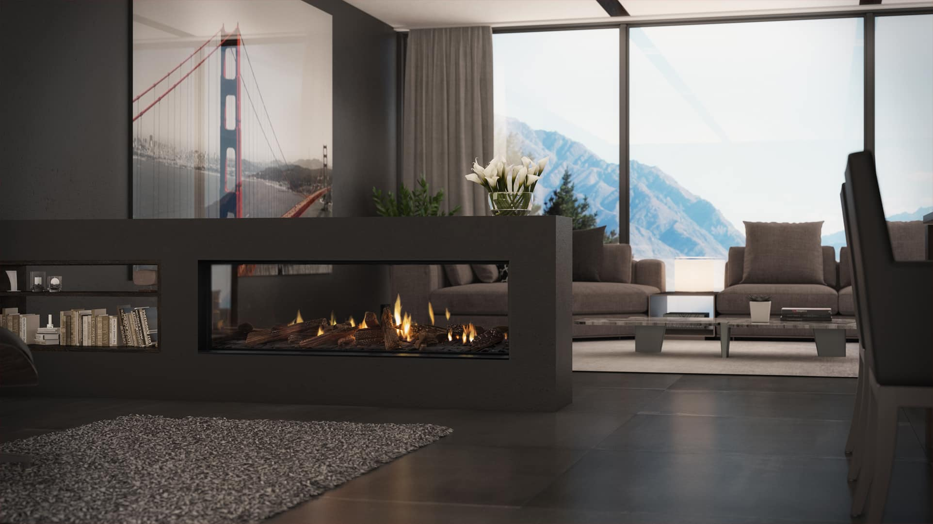 a find stunning point planika stoves focal room panoramic fireplace gas with view inspiration panorama fireplaces sided to provide ideas your for inserts architecturally an and